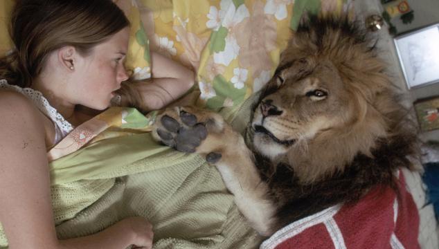 leon mascota imagen